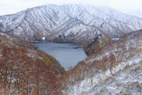 紅葉の雪景色 25388014696| 写真素材・ストックフォト・画像・イラスト素材|アマナイメージズ