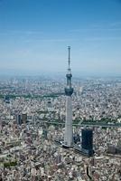 新緑の東京スカイツリーと隅田川