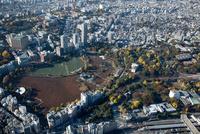 紅葉の不忍池と上野恩賜公園周辺
