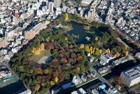 紅葉の清澄庭園周辺