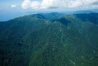 白神山地(ブナ天然林)白神岳と向白神岳周辺の山並み