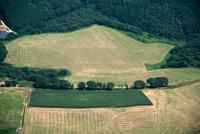 那須町大字豊原乙市付近の農場風景