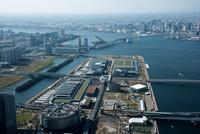 東京都豊洲市場周辺と東京港
