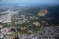 奈良公園,東大寺周辺より若草山方面