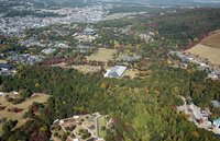 奈良公園と東大寺周辺