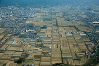 奈良盆地(条里地割)西井戸堂町より天理市街地
