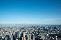 青空と都心のビル群と街並み(新宿より東京駅、東京スカイツリー)