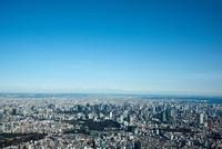 青空と東京の街並み(赤坂,四谷より東京スカイツリー方面)