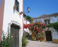 ブーゲンビリアと白壁の家 25410000600  写真素材・ストックフォト・画像・イラスト素材 アマナイメージズ
