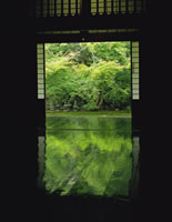 実相院の緑の床