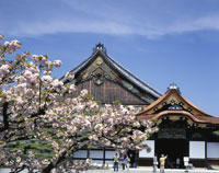 春の二条城二の丸御殿