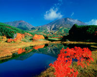 紅葉の沼と旭岳 熊ヶ岳 大雪山