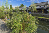 ハギ咲く倉敷川と町並 倉敷美観地区 25488033075| 写真素材・ストックフォト・画像・イラスト素材|アマナイメージズ