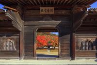 旧閑谷学校 校門(鶴鳴門)と紅葉の階の木 25488037466| 写真素材・ストックフォト・画像・イラスト素材|アマナイメージズ