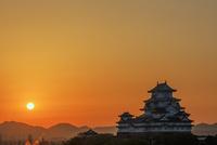 姫路城朝日 25488037516| 写真素材・ストックフォト・画像・イラスト素材|アマナイメージズ