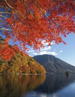 秋の中禅寺湖より男体山朝景 25516007792  写真素材・ストックフォト・画像・イラスト素材 アマナイメージズ