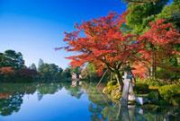 紅葉の兼六園 ことじ灯籠 25516032671  写真素材・ストックフォト・画像・イラスト素材 アマナイメージズ