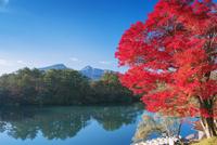 紅葉の五色沼 毘沙門沼と磐梯山(会津富士) 磐梯高原