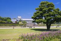 シラン咲く新緑の金沢城公園 橋爪門続櫓と五十間長屋
