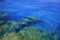 高那崎 青い海 波照間島