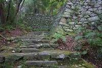 宇和島城 石畳の階段と石垣