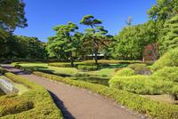 江戸城 二の丸庭園 25516049347  写真素材・ストックフォト・画像・イラスト素材 アマナイメージズ