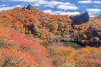 くじゅう連山 紅葉の大船山 御池 25516049639| 写真素材・ストックフォト・画像・イラスト素材|アマナイメージズ