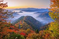 紅葉のおにゅう峠より雲海の山並み朝景 25516049674| 写真素材・ストックフォト・画像・イラスト素材|アマナイメージズ
