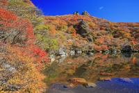 くじゅう連山 紅葉の大船山 御池 25516049707| 写真素材・ストックフォト・画像・イラスト素材|アマナイメージズ