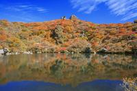 くじゅう連山 紅葉の大船山 御池 25516049708  写真素材・ストックフォト・画像・イラスト素材 アマナイメージズ