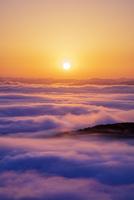 高谷山 霧の海展望台より雲海と山並みと朝日 25516049725| 写真素材・ストックフォト・画像・イラスト素材|アマナイメージズ