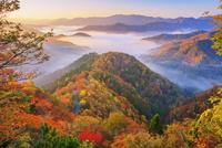 紅葉のおにゅう峠より雲海の山並み朝景 25516049747| 写真素材・ストックフォト・画像・イラスト素材|アマナイメージズ