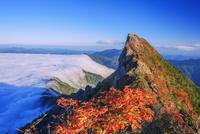 紅葉の石鎚山 弥山より天狗岳 25516049797| 写真素材・ストックフォト・画像・イラスト素材|アマナイメージズ