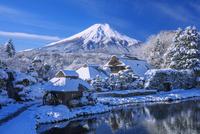 雪のはんの木林民俗資料館より富士山 25516049907| 写真素材・ストックフォト・画像・イラスト素材|アマナイメージズ