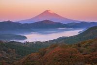 大観山より紅葉の芦ノ湖と富士山朝焼け 25516049914| 写真素材・ストックフォト・画像・イラスト素材|アマナイメージズ