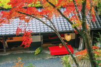 鳥居本 紅葉の平野屋
