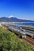 東海道本線と富士山 由比駅〜興津駅