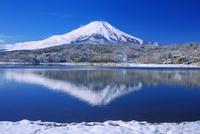雪の山中湖より富士山