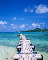 石垣島の盛夏