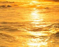 金色の波 25532008374| 写真素材・ストックフォト・画像・イラスト素材|アマナイメージズ