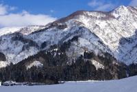 八海山山麓冬景色