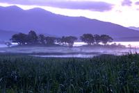 霧漂う湖畔の朝
