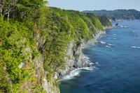 鵜の巣断崖 25532011621| 写真素材・ストックフォト・画像・イラスト素材|アマナイメージズ
