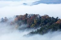 雲海に包まれた備中松山城 25532011809| 写真素材・ストックフォト・画像・イラスト素材|アマナイメージズ