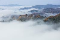 雲海に包まれた備中松山城