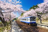桜の能登さくら駅