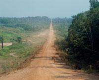 アマゾン横断道路 25588006059  写真素材・ストックフォト・画像・イラスト素材 アマナイメージズ