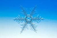 雪の結晶 樹枝状