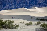 デスバレーの砂丘