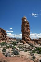 エデンの庭に立つ岩塔